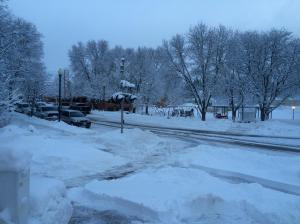 Schnee 1-26-16